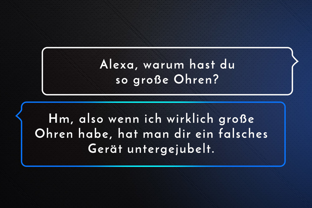 amazon_alexa_img_13.jpg