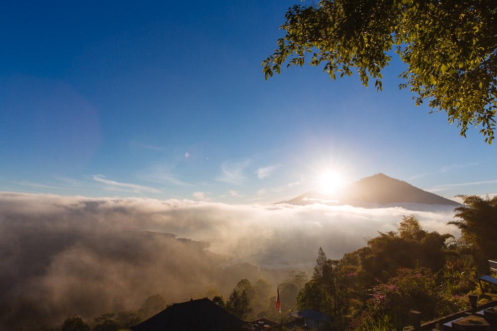 Sarah Waiswa Bali-8.jpg