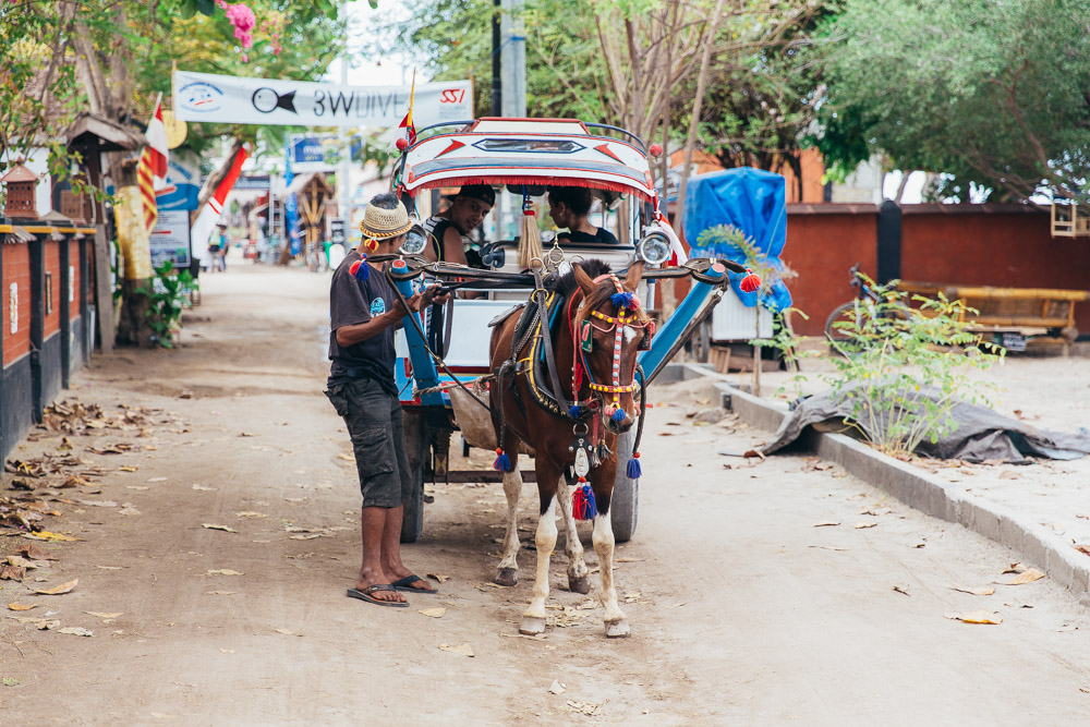 Mode of transportation on the island