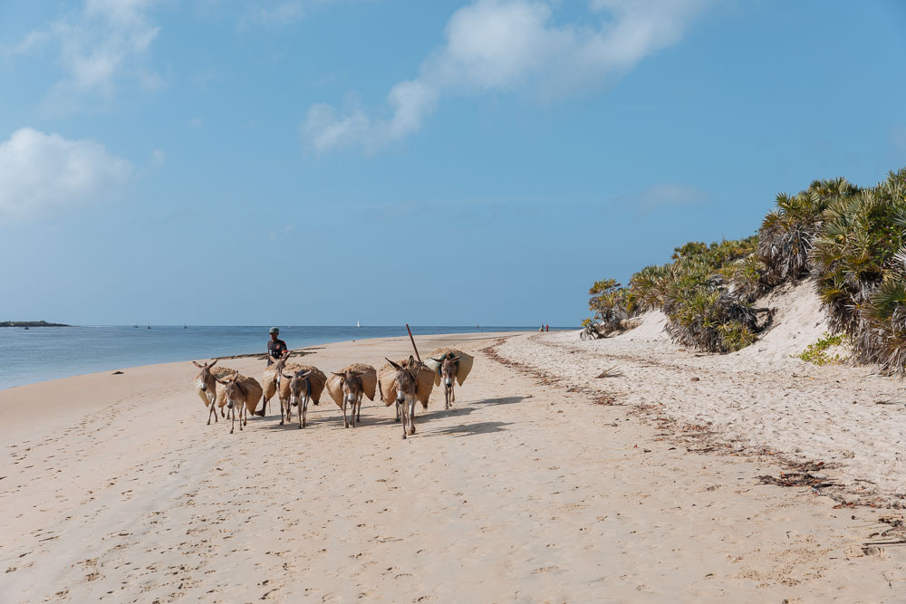 Donkeys are still the main mode of transportation on the island.
