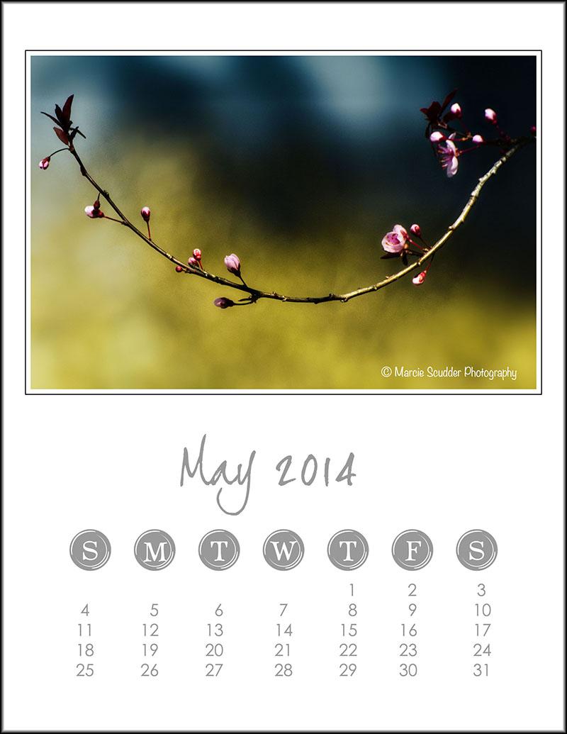 02497pxp.May_Calendar_2014.jpg