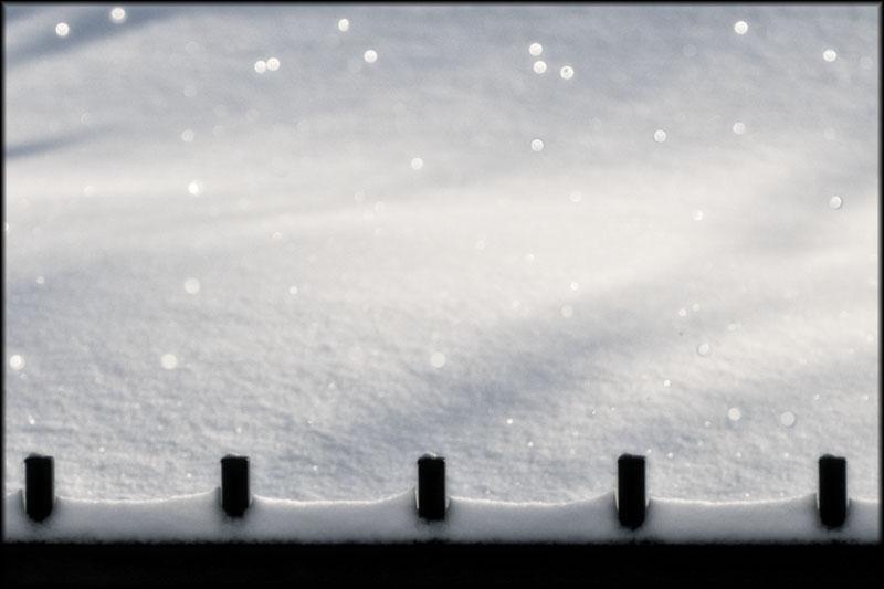 02384pxp.Snow_Sparkles.jpg