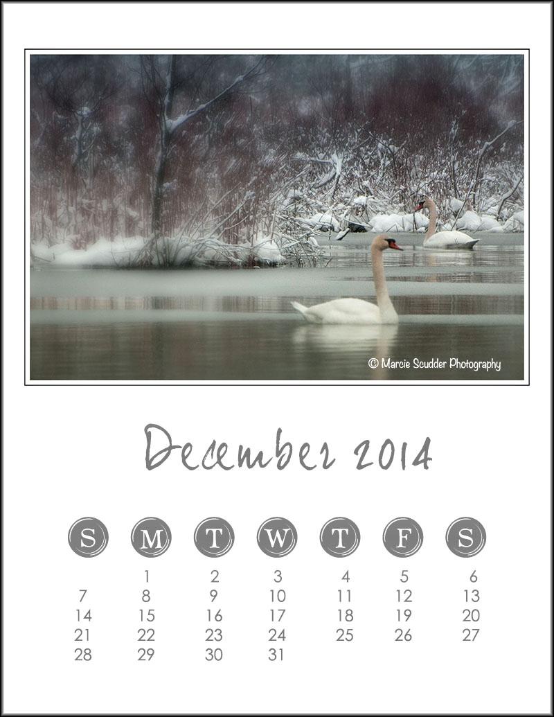 02622pxp.December_Calendar_2014.jpg