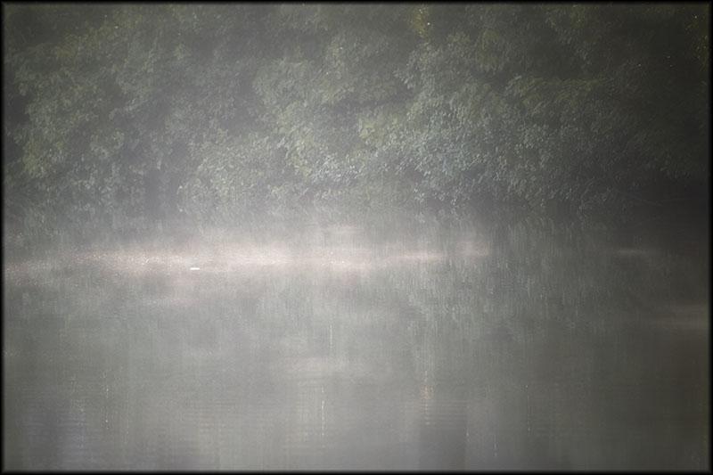 02236pxp.One_Little_Light.jpg