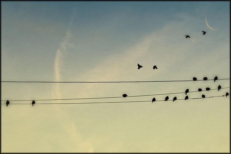 02645pxp.When_I'm_Lost.jpg