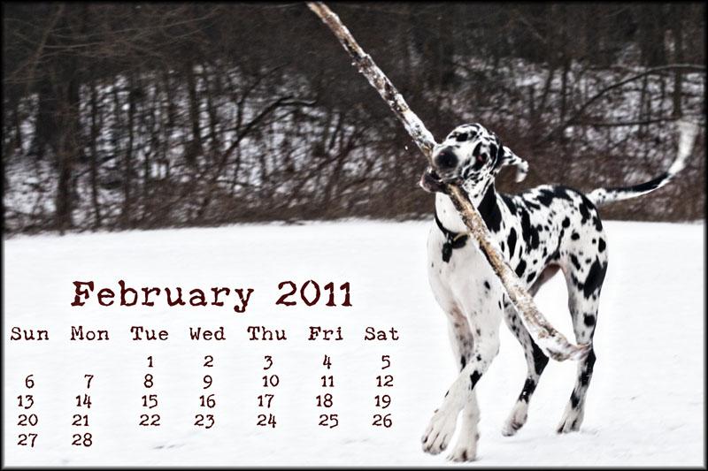 02387pxp.February_Calendar_2011.jpg