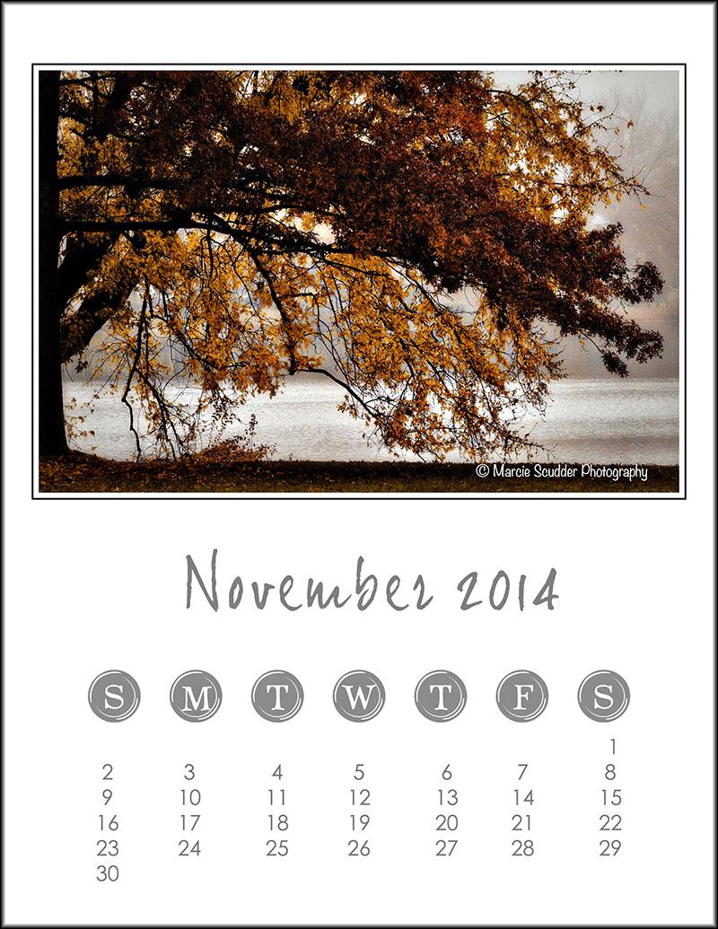 03466pxp.November_Calendar_2014.jpg