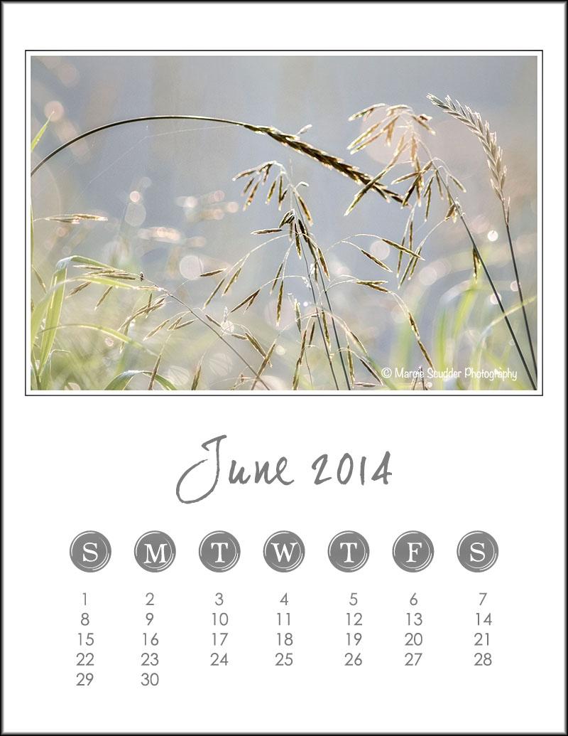 03518pxp.June_Calendar_2014.jpg