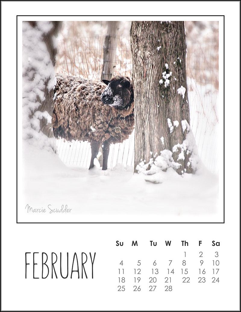 03162pxp.February_Calendar_2018.jpg