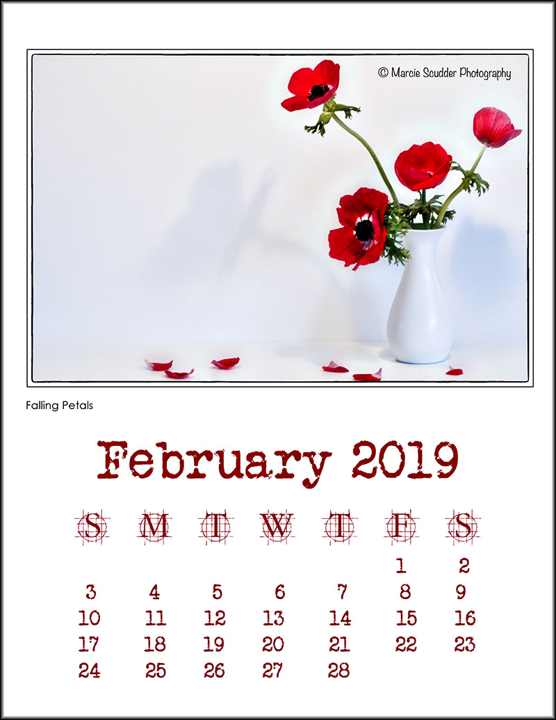 03305pxp.February_Calendar_2019.jpg