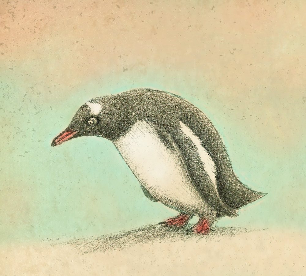 penguin drawing color.jpg