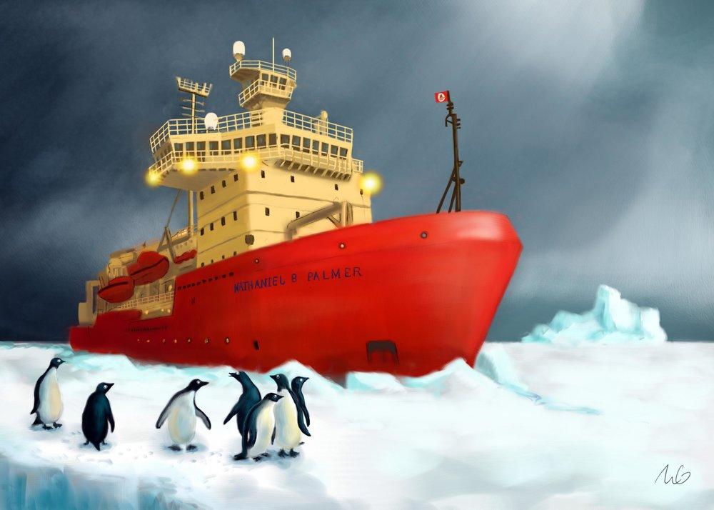 ship final web.jpg