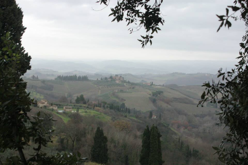 View of countryside near San Gimignano, 2014.