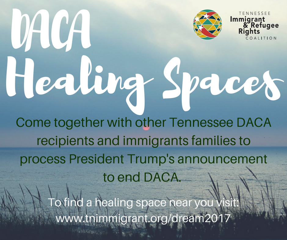 DACA+Healing+Spaces_ENG.png