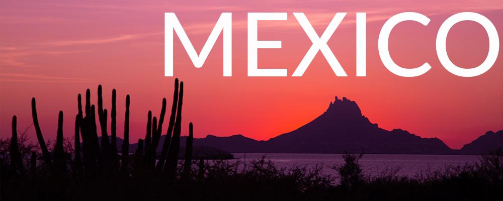 MEXICOWEBSITEBUTTON.jpg