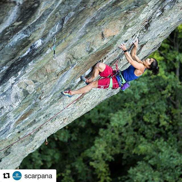 We're working hard and so should you. Get psyched. #tristatebouldering championships is Saturday.  #Repost @scarpana ・・・ Who's excited for the East coast climbing throw down this weekend at the finals for the @tristatebouldering series? We are stoked to send SCARPA athlete @alannah_yip to defend her title. Good luck to her and all of the climbers competing! 📷: @philip_quade #climb #climbing #bouldering #rockclimbing #noplacetoofar