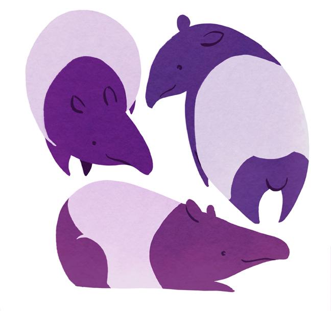 eloisenarrigan_tapir.jpg