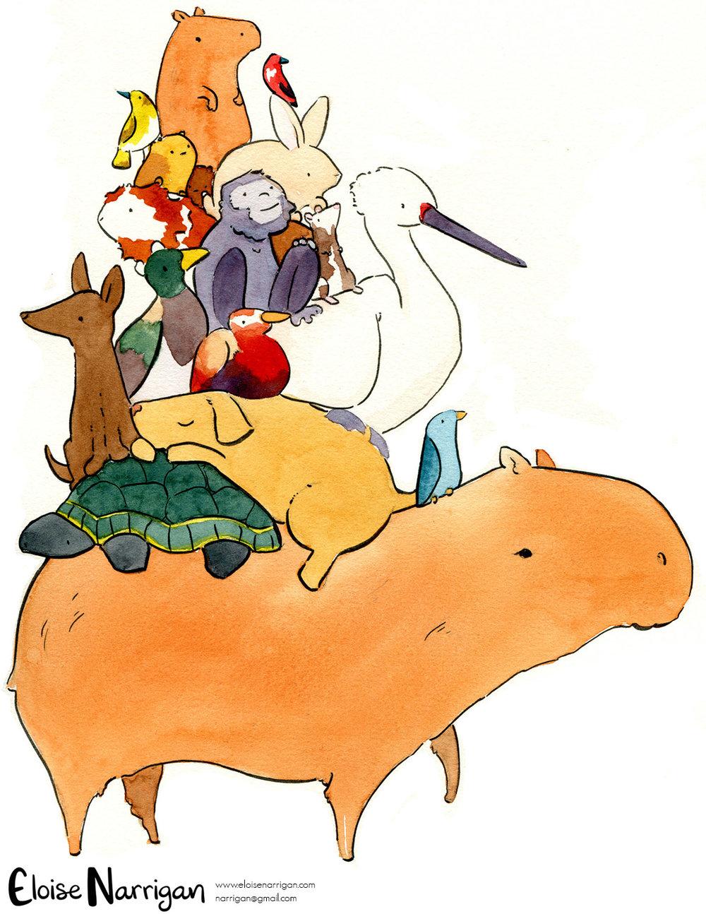 eloisenarrigan_capybara.jpg
