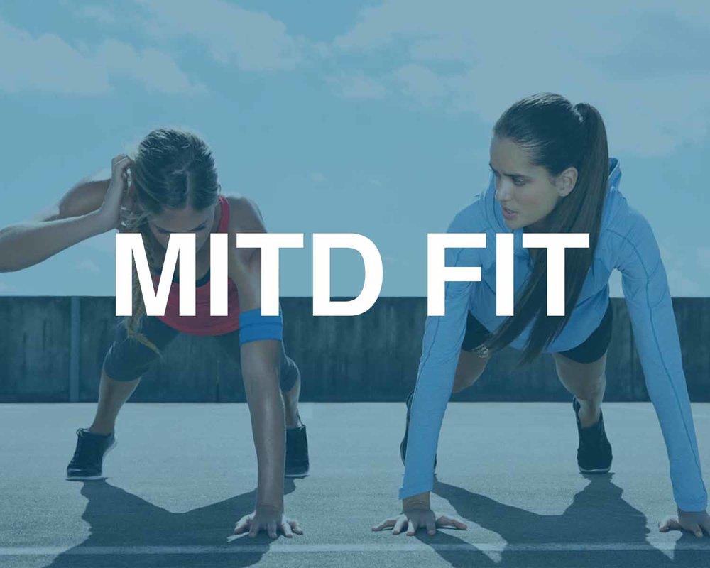 MITDFIT.jpg