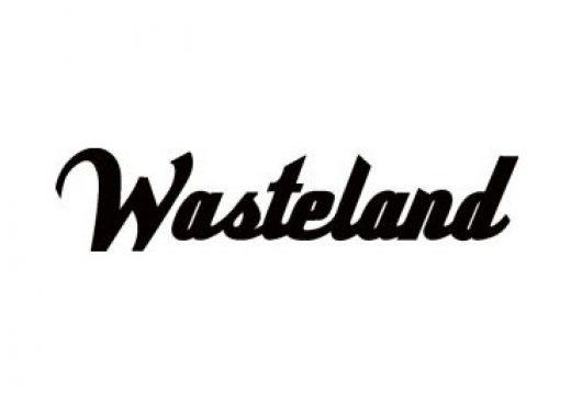 Wasteland-520x365.jpg