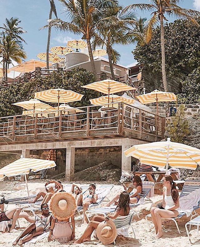 Thursday Travel Inspo via @camilacoelho . . . . . . . . . . . #beach #bermuda #yellow #travel #summer #fun #love #live life #pictureoftheday