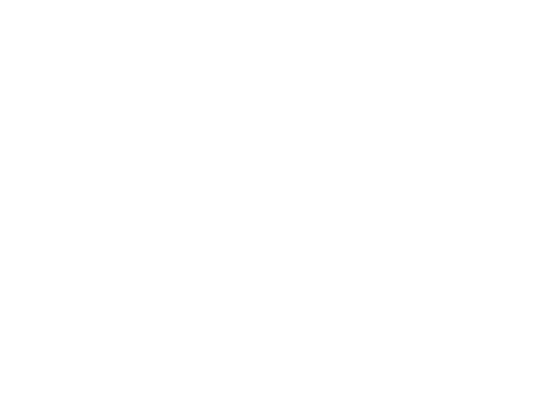 Healium | Yoga and Holistic Health in Wellington