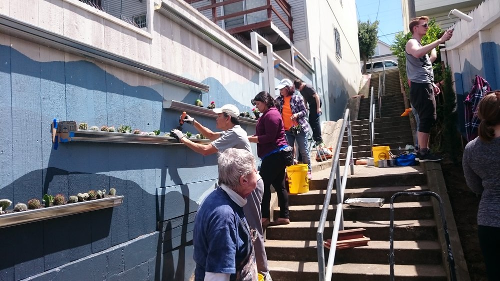 Volunteers install succulents at Kenny Alley, April 2016