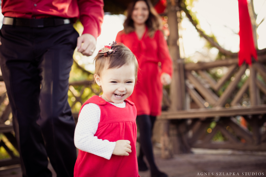 Family Christmas Session Chagrin Falls, Cleveland, Ohio Photographer