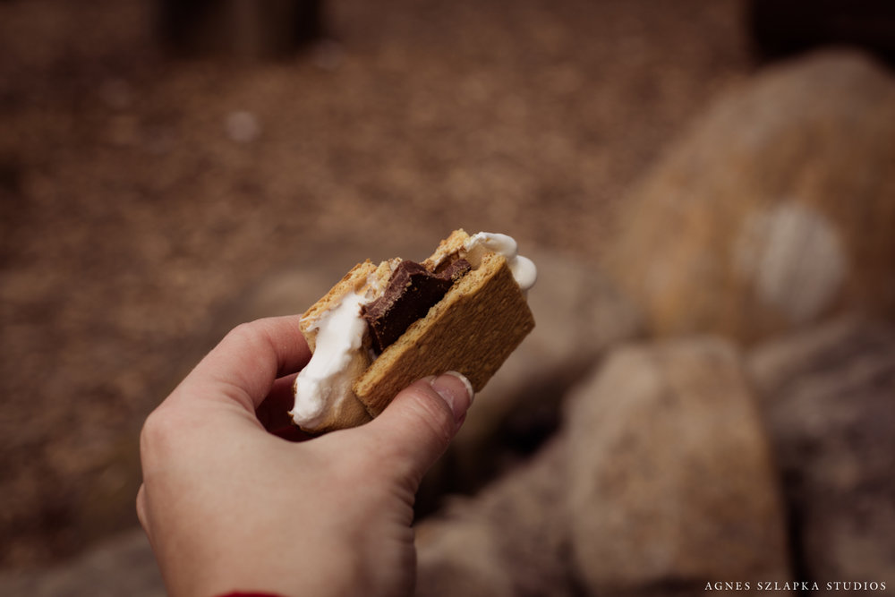 s'mores from camp fire | cleveland christmas photographs