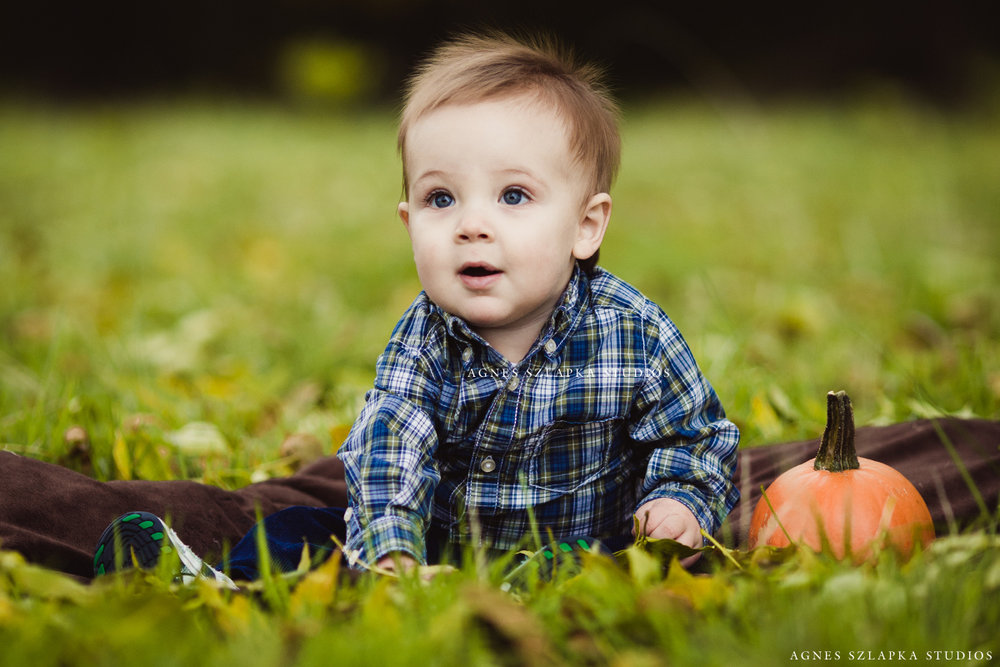 nine month old boy with pumpkin | cleveland, ohio kids portraits