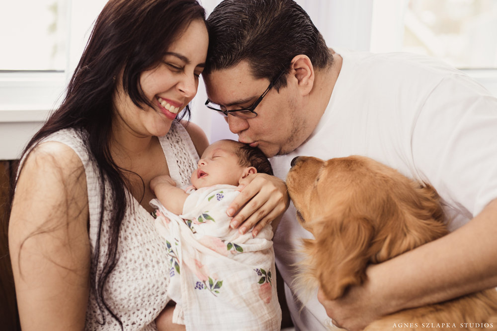 family of three with baby girl and golden retriever dog | cleveland, ohio newborn photographer