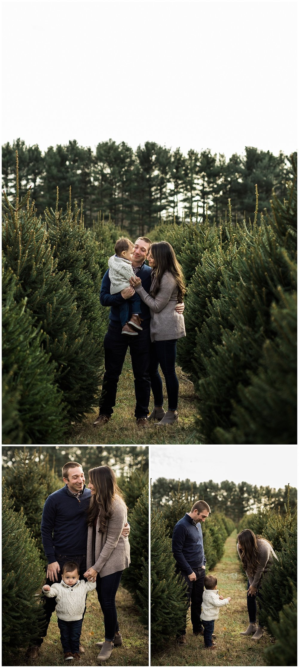 holiday family pictures at sugar pines farm | cleveland, OH photographer