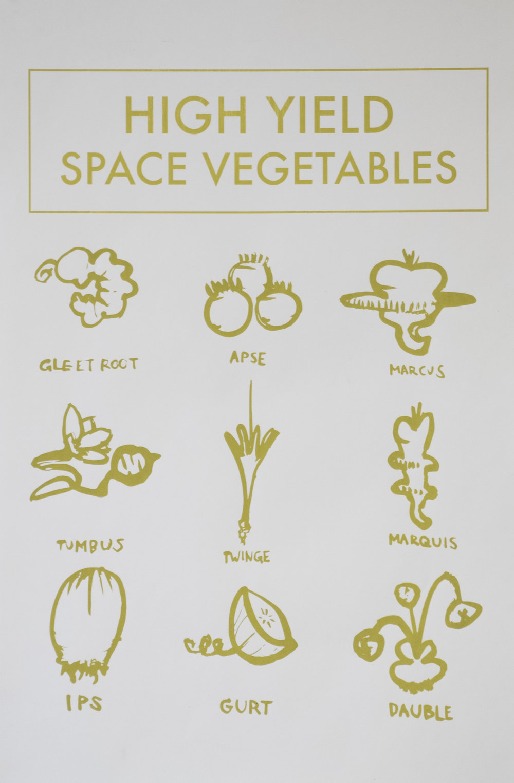 small.High Yield Space Vegetables crop.jpg