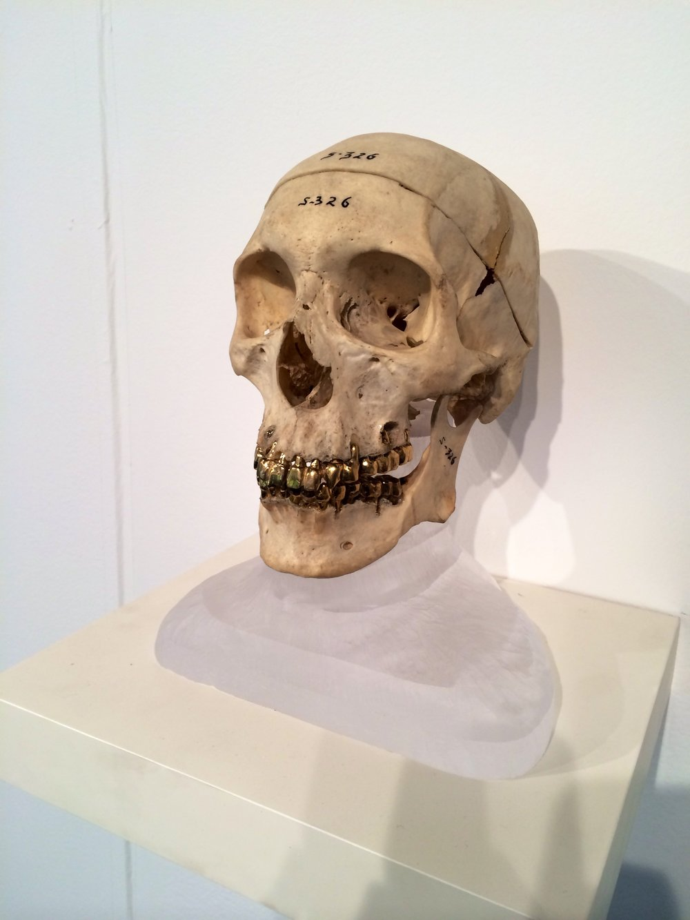 """Jefferson Pinder  Head of a Man   2015 skull, 24-carat gold plate, frosted plastic base 14"""" x 10"""" x 8"""""""