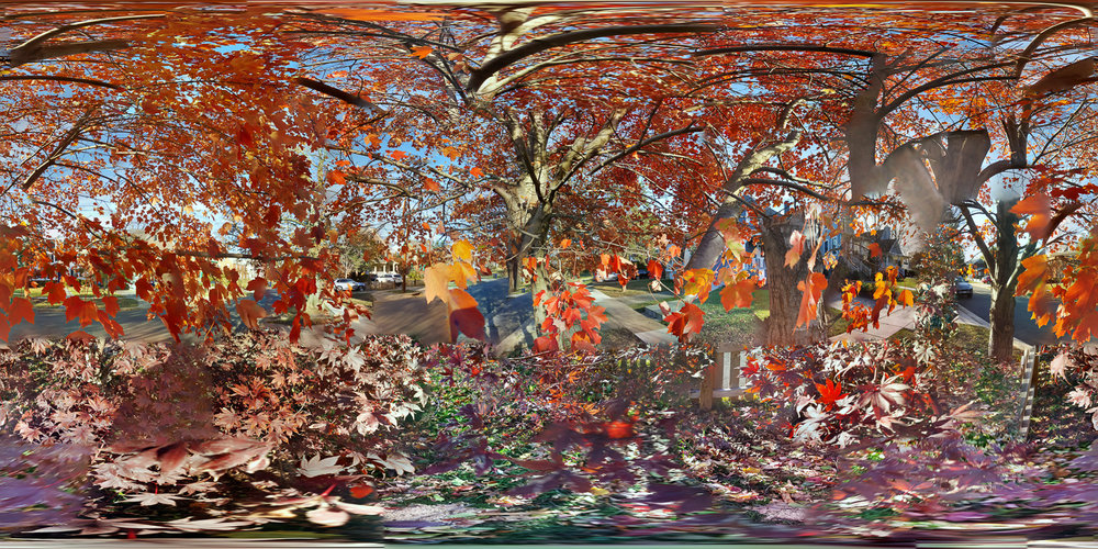 "Jason Horowitz  Key Boulevard, Arlington, VA  Archival inkjet prints c. 40"" x 80"" 2016"