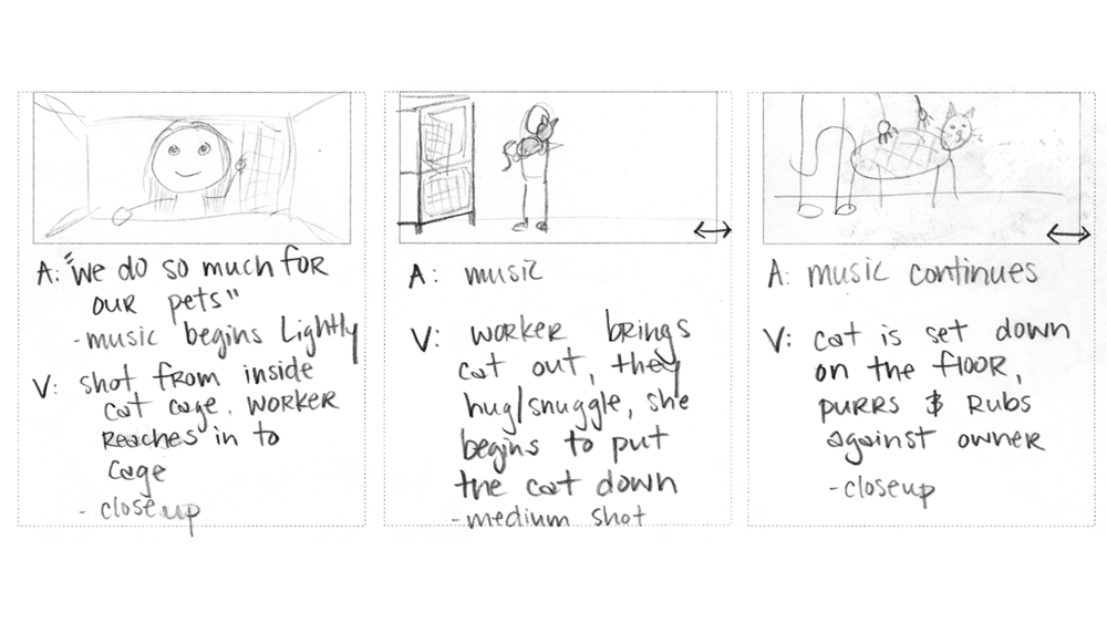 HSCI Cat Kennel Opening storyboard.png