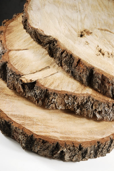 Timber Slabs $2/ea.
