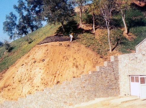 hillside-1.jpg