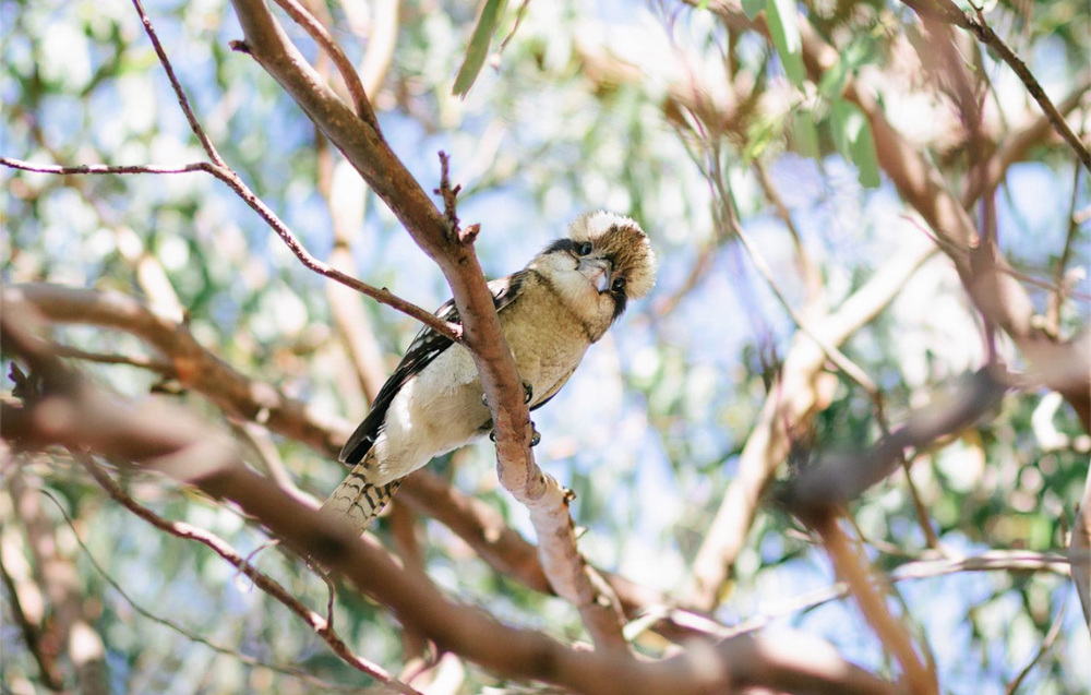 cameron-zegers-photography-sydney-travel-46.jpg