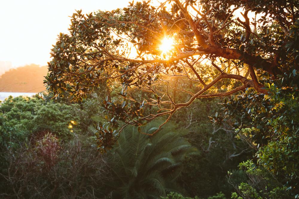 cameron-zegers-photography-sydney-travel-55.jpg