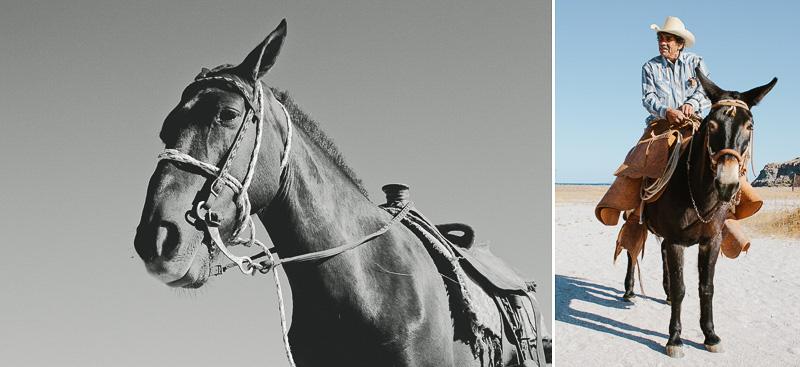 cameron-zegers-photography-baja-mexico-travel-10.jpg