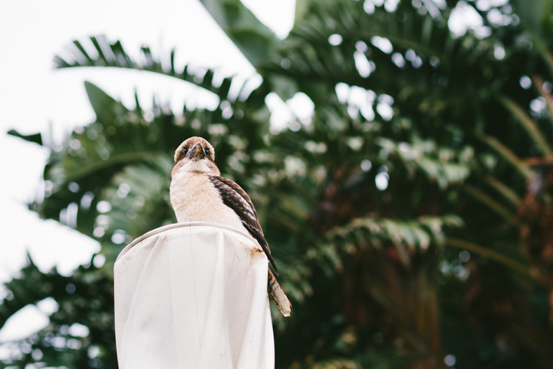 cameron-zegers-photography-sydney-wedding-002.jpg