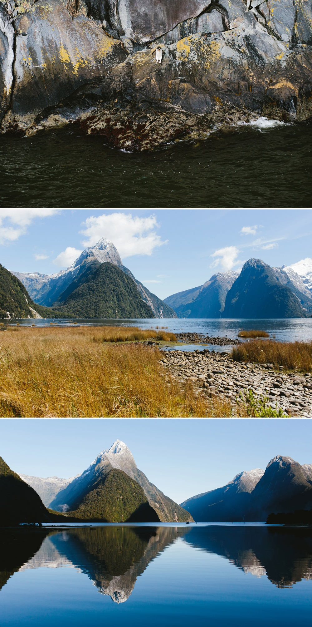 cameron-zegers-seattle-photographer-milford-sound-new-zealand-travel_0009.jpg