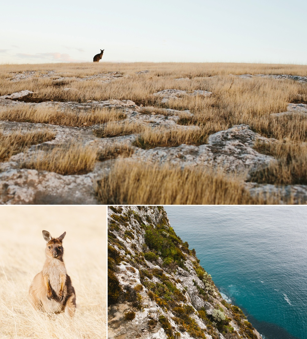 cameron-zegers-seattle-photographer-kangaroo-island-australia-travel_0001.jpg