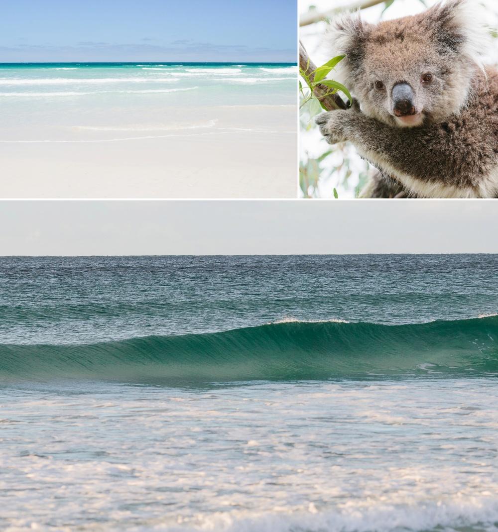 cameron-zegers-seattle-photographer-kangaroo-island-australia-travel_0003.jpg