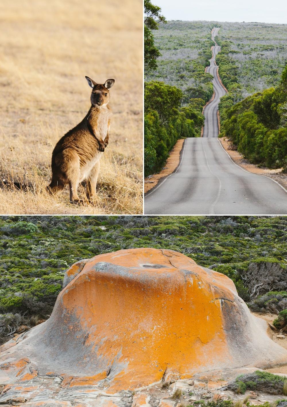 cameron-zegers-seattle-photographer-kangaroo-island-australia-travel_0017.jpg
