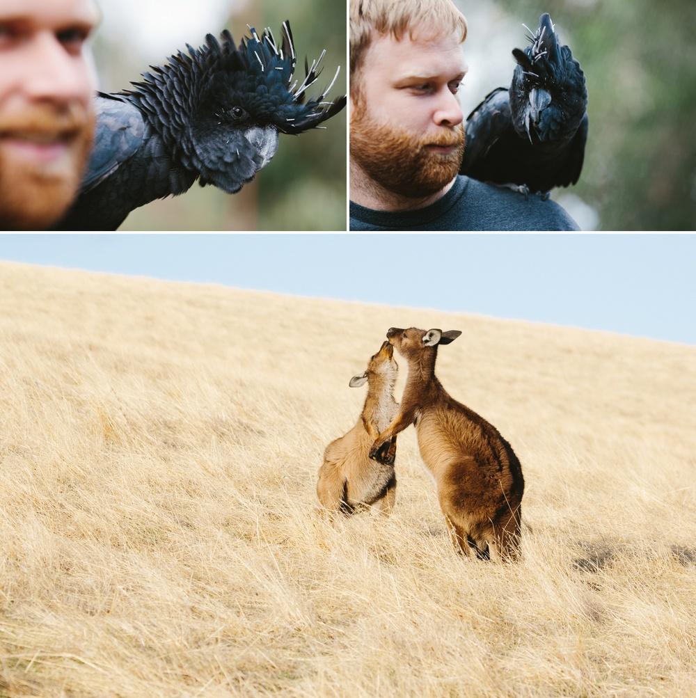 cameron-zegers-seattle-photographer-kangaroo-island-australia-travel_0021.jpg