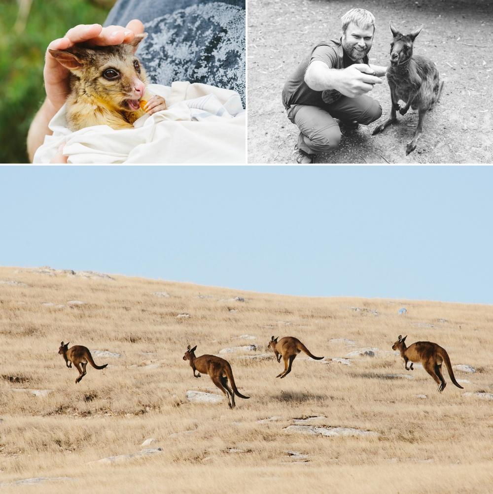 cameron-zegers-seattle-photographer-kangaroo-island-australia-travel_0022.jpg
