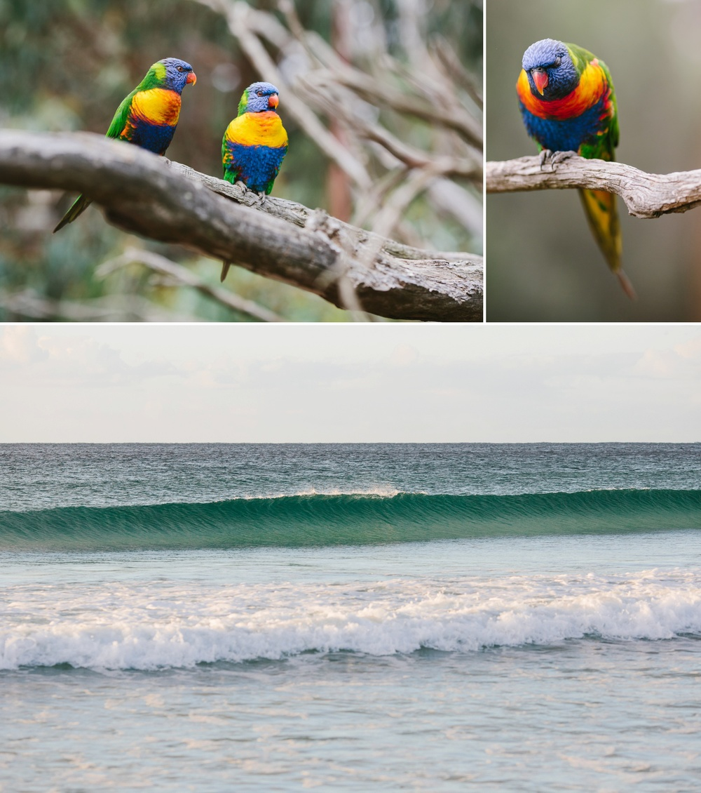 cameron-zegers-seattle-photographer-kangaroo-island-australia-travel_0023.jpg