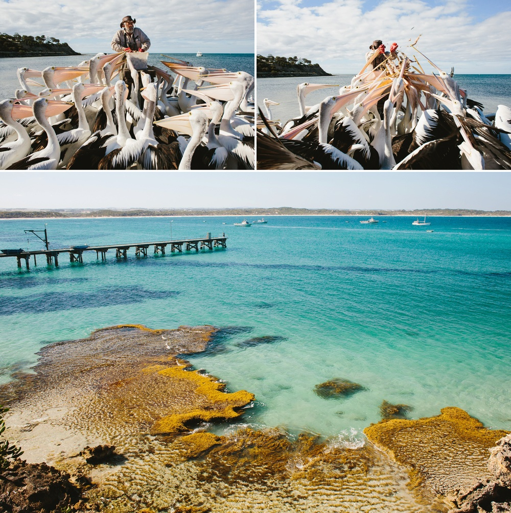 cameron-zegers-seattle-photographer-kangaroo-island-australia-travel_0026.jpg